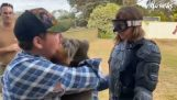 นักข่าวพบหมีที่อันตรายที่สุดของออสเตรเลีย