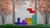 Soft Body Tetris