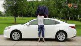 A car umbrella