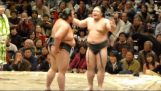 Funny sumo fight (37th Japan Grand Sumo Tournament)