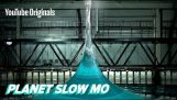 Lodret Spike Wave i slowmotion