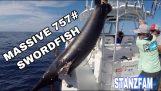 Catching a 343kg swordfish