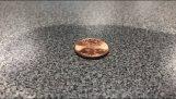 اختبار التوتر السطحي للماء على العملة