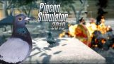 Pigeon simulator 2019