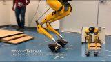 หุ่นยนต์สองเท้า