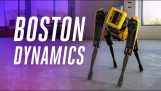 Boston Dynamics Punkt: seine neue Tricks