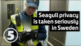 Swedish police take privacy very seriously