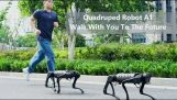 Quadruped robot from China