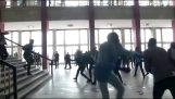 Uma briga no parlamento do Congo