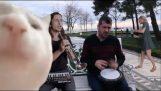 """Ievan Polkka"" Remix by The Kiffness"