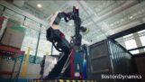 Elastyczne roboty magazynowe firmy Boston Dynamics