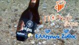 Грчко пиво (επ.04): 8. септембар дан