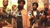 Talebani / Amici