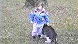 Obtěžující kočka