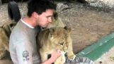 The young lions do hugs