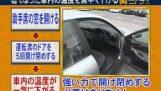 Łatwy sposób pobrać temperaturę Twojego samochodu