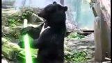 I Jedi orso