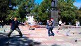Μονομαχία στην πλατεία με τα περιστέρια