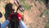 Мотоциклист сохраняет небольшой теленок