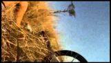 Cyklist krockar med antilop