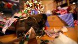 Τα καλύτερα χριστουγεννιάτικα δώρα