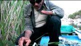 Ο τυφλός ψαράς