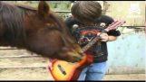 בגיטרה משחק סוס