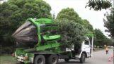 כיצד להעביר עץ