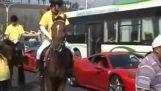 Kôň, ktorý nenávidí Ferrari