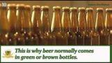 10 πράγματα που πρέπει να γνωρίζετε για την μπύρα