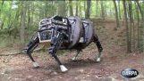Einen vierbeinigen Roboter