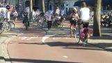 Οι ποδηλατοδρόμοι της Ολλανδίας
