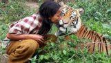 Ο καλύτερος φίλος του είναι μια τίγρης