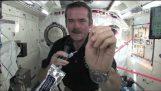 Πως πλένεις τα χέρια σου στο διάστημα;