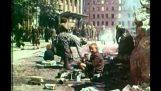 Οι συνέπειες του πολέμου: Βερολίνο, 14 Μαίου 1945