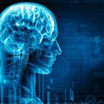 Στα άδυτα του ανθρώπινου εγκεφάλου