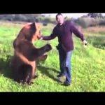 Μια απίθανη αρκούδα από την Ρωσία