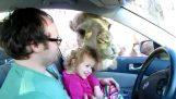 Συνάντηση με μια καμήλα