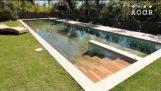 La piscina segreta
