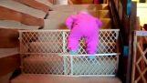 Babys in gefährlichen Einsätzen