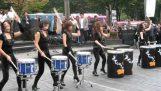 ที่นี่ Drumcats