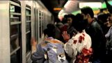 De Milão para o Metro de Tóquio