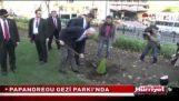सी. Papandreou रोपण पेड़… साथ साथ गमला!