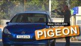 Remi Gaillard: Το περιστέρι