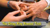 Comment obtenir facilement un anneau