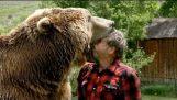 Μια αρκούδα γκρίζλι στον κήπο μου