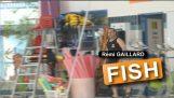 레미가 일 라 드: 물고기