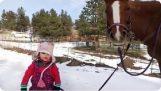 एक छोटी लड़की जाओ उसे घोड़े की सवारी