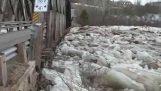 캐나다에서 다리를 파괴 하는 얼음