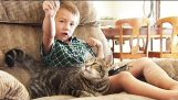 Інтерв'ю з родиною дитиною врятовано своєю кішкою